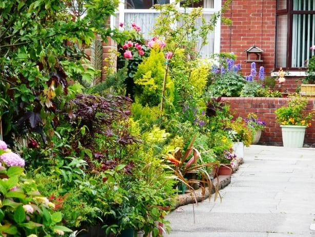Rockcliffe Avenue Cultivation Street front garden campaign