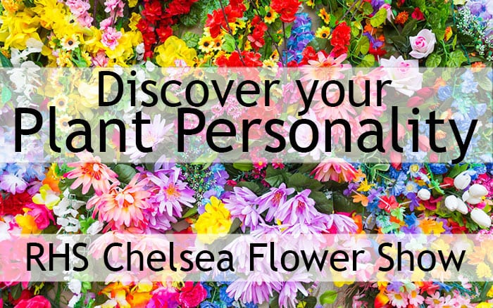 RHS Chelsea Flower Show - Discover your plant personality