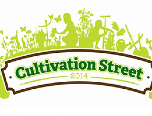 Cultivation Street campaign – news and changes to applications