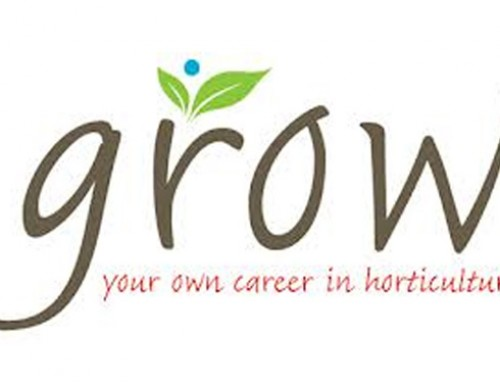 Judging the GROW Careers film-making competition
