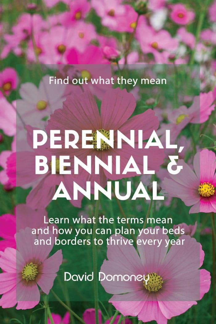 What Does Perennial Biennial And Annual Plants Mean