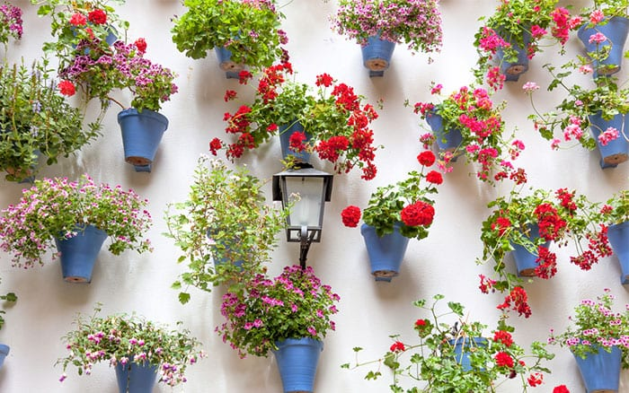 pots-on-wall-in-courtyard-container-garden