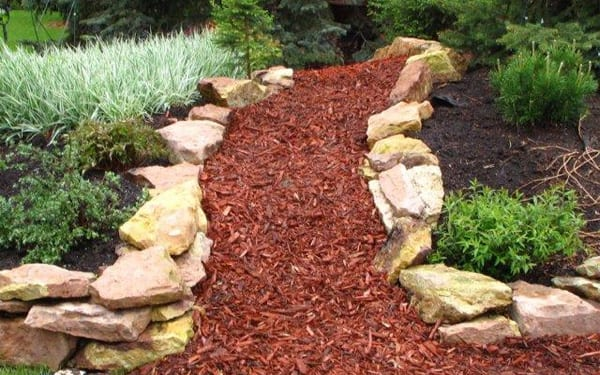 Pathway of wood chippings