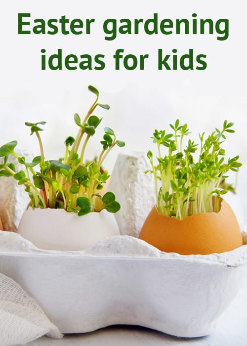Great Easter Gardening Projects For Children - David Domoney