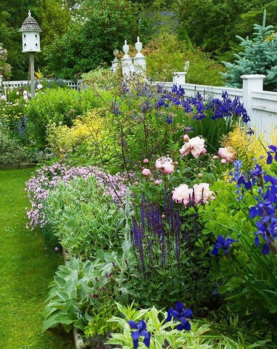 How To: Plant A Herbaceous Perennial Border