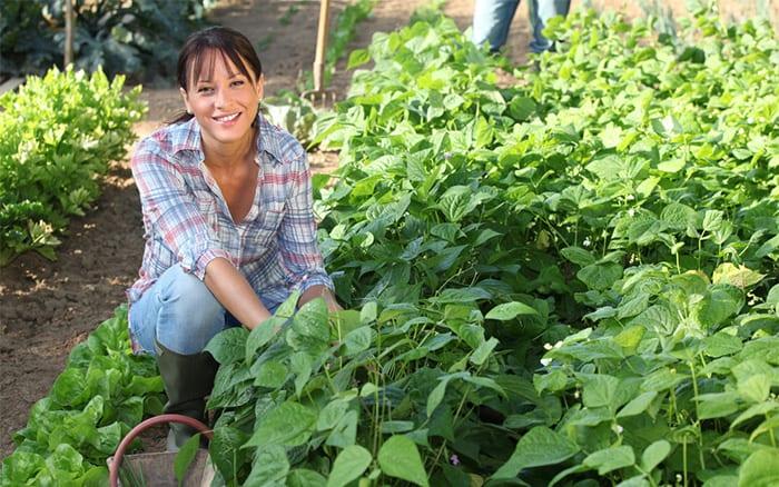 woman-in-veg-plot-allotment