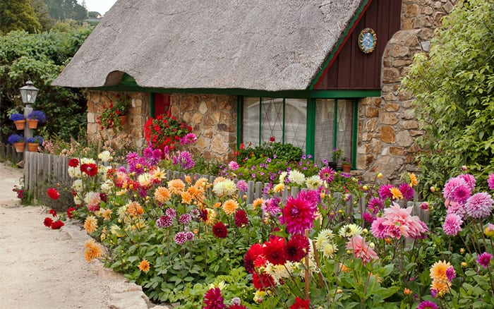 Small Garden Design Ideas   Use Bright Colours Like This Cottage Front  Garden
