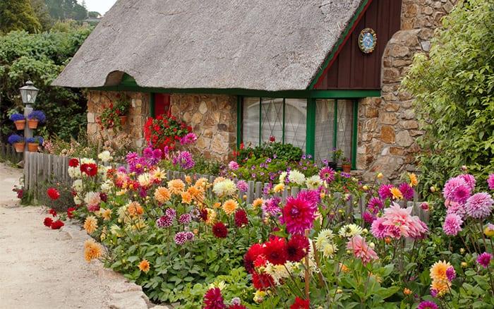Ten Top Tips For Small Shady Urban Gardens: Top 10 Tips For Small Garden Design To Transform Your Space