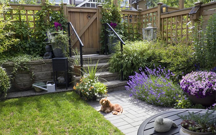 small city garden design tips add height with trellis - Small Garden Design