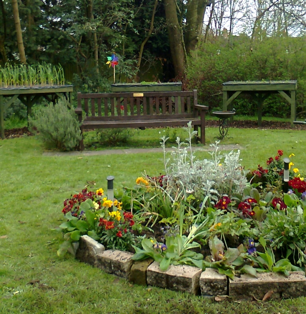 The garden this year, including the bench with the plaque