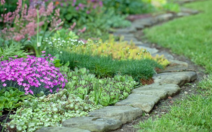 How to design a garden 10 rules for choosing plants and for Low growing landscape plants