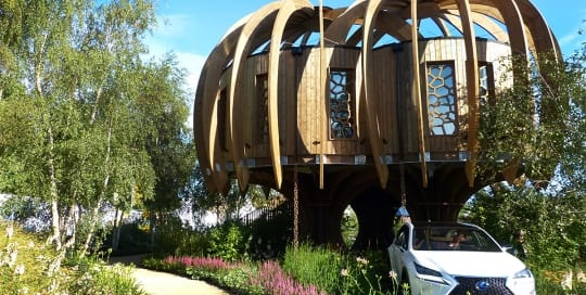 Quiet Mark Treehouse and Garden by John Lewis designed by David Domoney at RHS Hampton Court Palace Flower Show 2014
