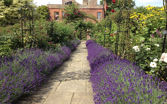 Garden Design Enfield : Manor gardens in enfield visited by david domoney for love your garden