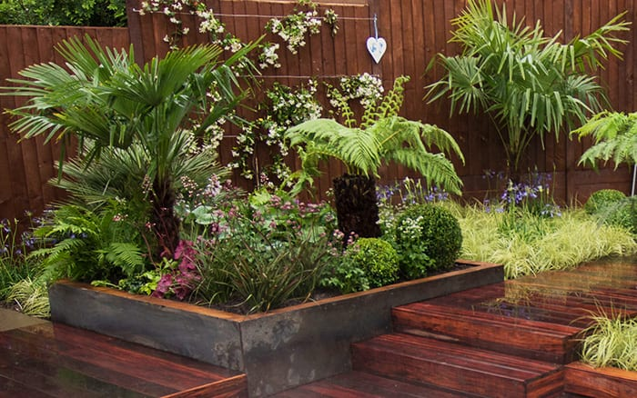 Tropical Garden Ideas Uk the 10 best plants to get a tropical garden style in britain