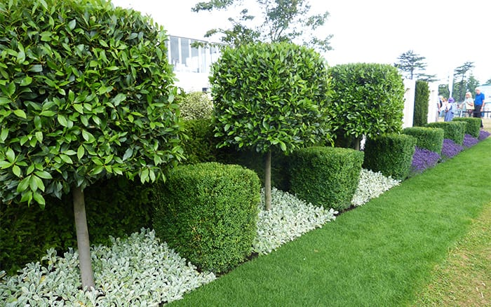 formal-garden at RHS Hampton Court Palace trends 2014