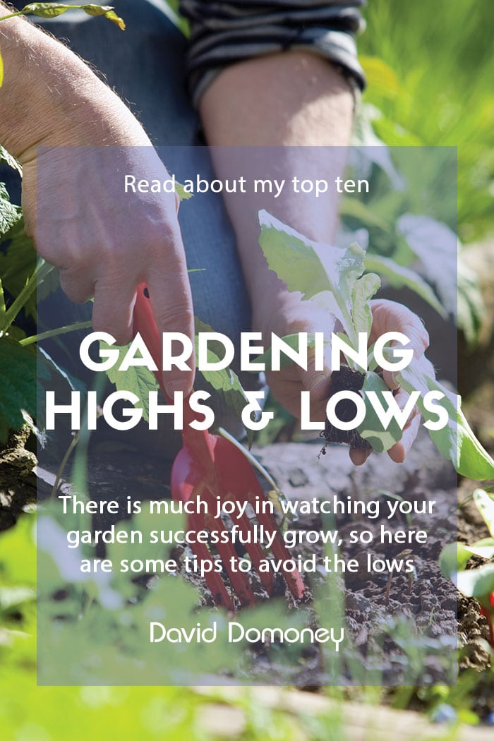 Top ten gardening highs and how to avoid the lows feature