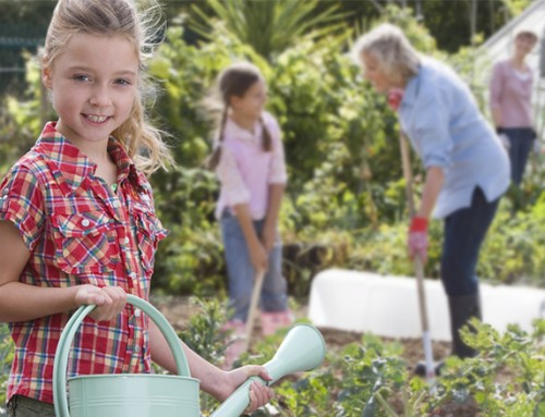 10 highs and lows of being a gardener – and how to avoid the lows