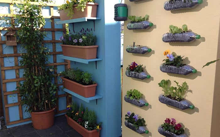 finished-garden ITV This Morning TV Gardener David Domoney looks at creating a vertical garden using walls to grow plants