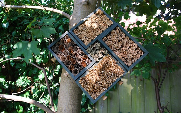 Wildlife garden: step by step guide to making your own insect hotel