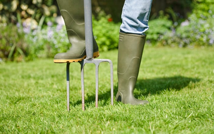 how to scarify grass lawn-aeration with a fork to improve drainage and prevent waterlogging over winter