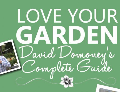 Complete Guide to ITV's Love Your Garden