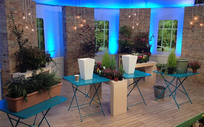 David Domoney TV Gardener on ITV This Morning programme to talk about gardening in autumn