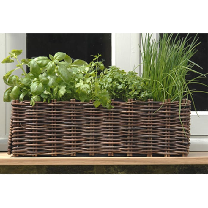 burgon-and-ball-window-planter