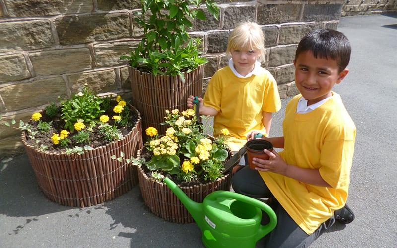 Cultivation School street Skipton parish school runner up