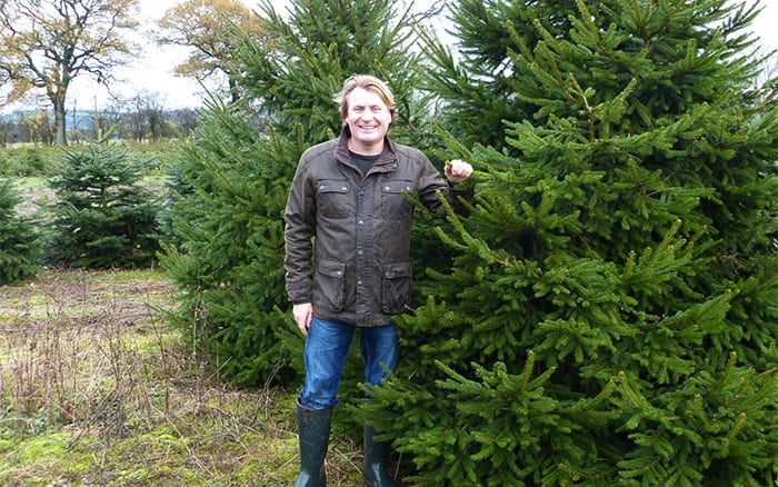 David-Domoney-with-Christmas-tree choosing the best real tree for your home