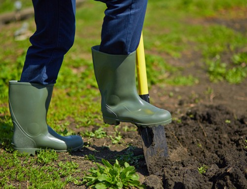 How to prepare your garden soil for cultivation