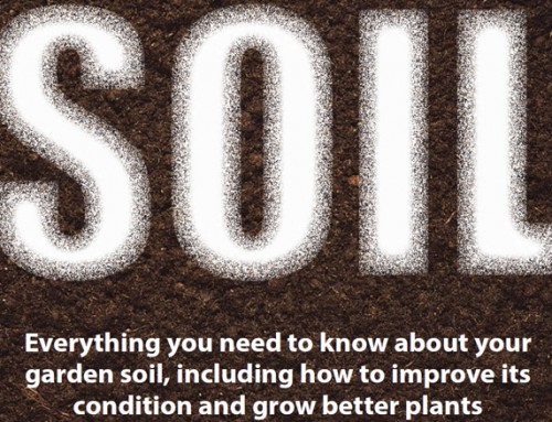 The Expert Gardening Guide to Soil
