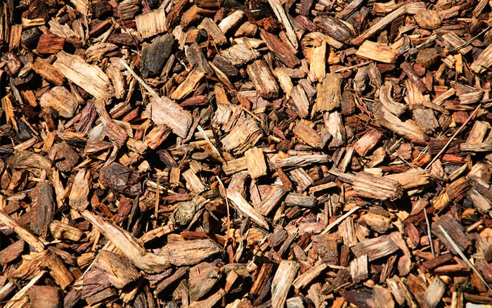 Wood Chips For Landscaping ~ Should we use fresh or composted bark chippings in the garden