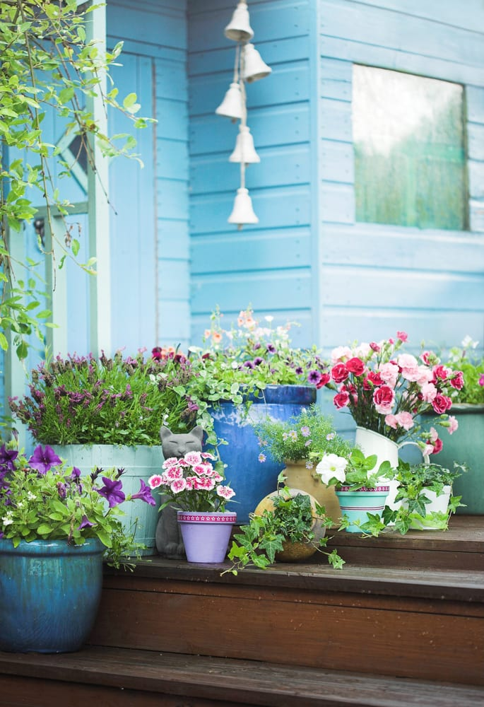 blue shed with pots and windchime