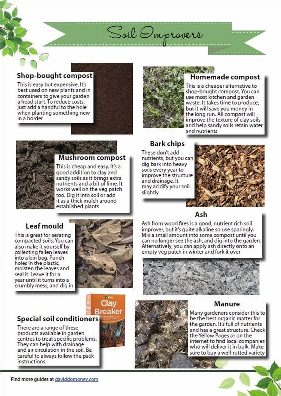 Soil improvers infographic: How to improve your soil and what to dig into your soil. Download this full guide to garden soil and grow the best plants ever!