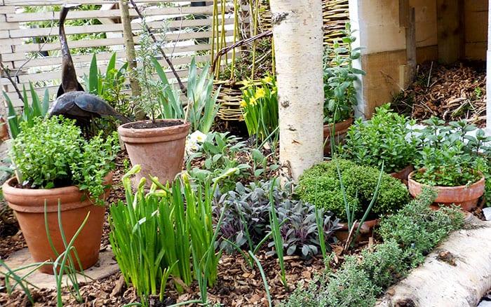 shuttleworth-garden-bed