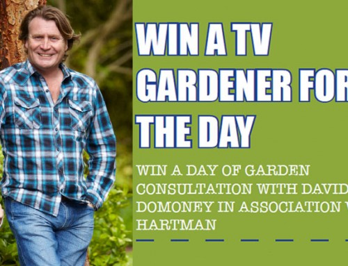Competition! Win TV Gardener David Domoney for a day
