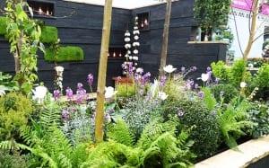 young gardeners of the year 2015 winning garden design