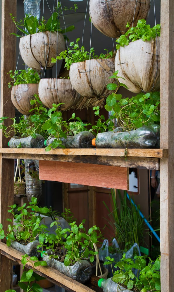 A recycled container garden made with plastic drinks bottles and hanging baskets made from wood scraps. Quirky and unusual container gardening ideas