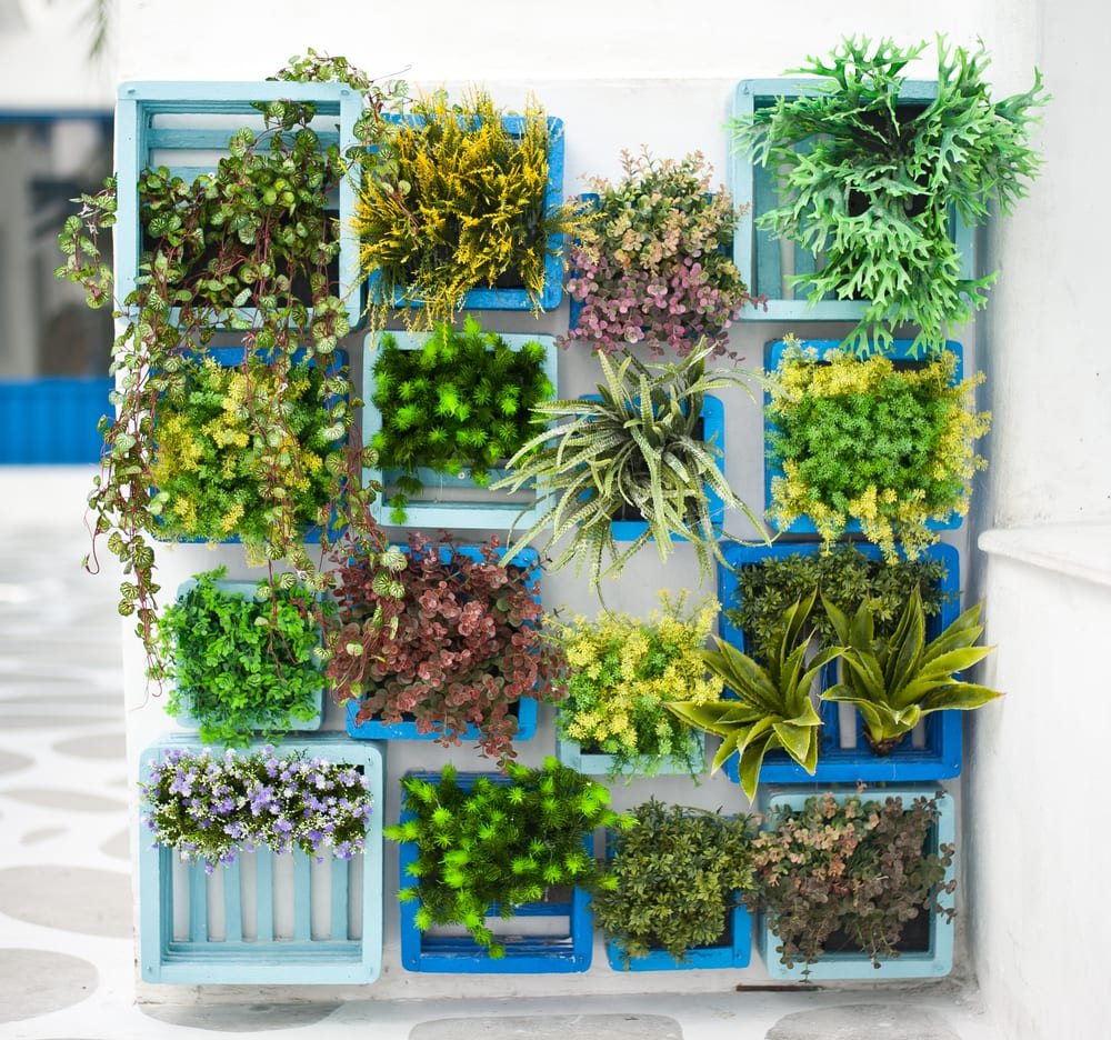 A boxy container garden with wooden pallets and textured foliage plants. Here are quirky container gardening ideas
