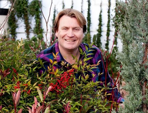Cultivation Street Garden Centre Weekend: Meet David!
