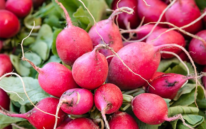 Bunch of fresh radishes. SJ Allen/Shutterstock.com