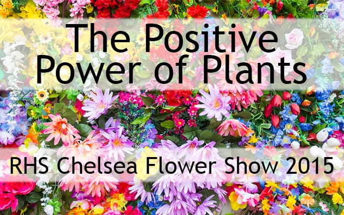 the positive power of plants at the chelsea flower show