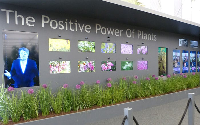 positive-power-of-plants-exhibit
