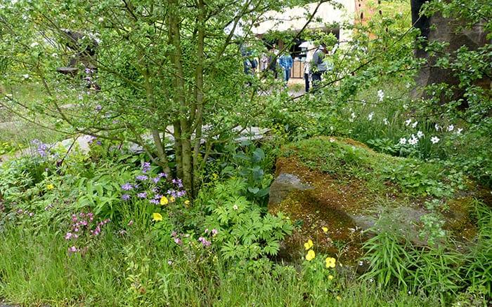 Chatsworth Laurent-Perrier garden