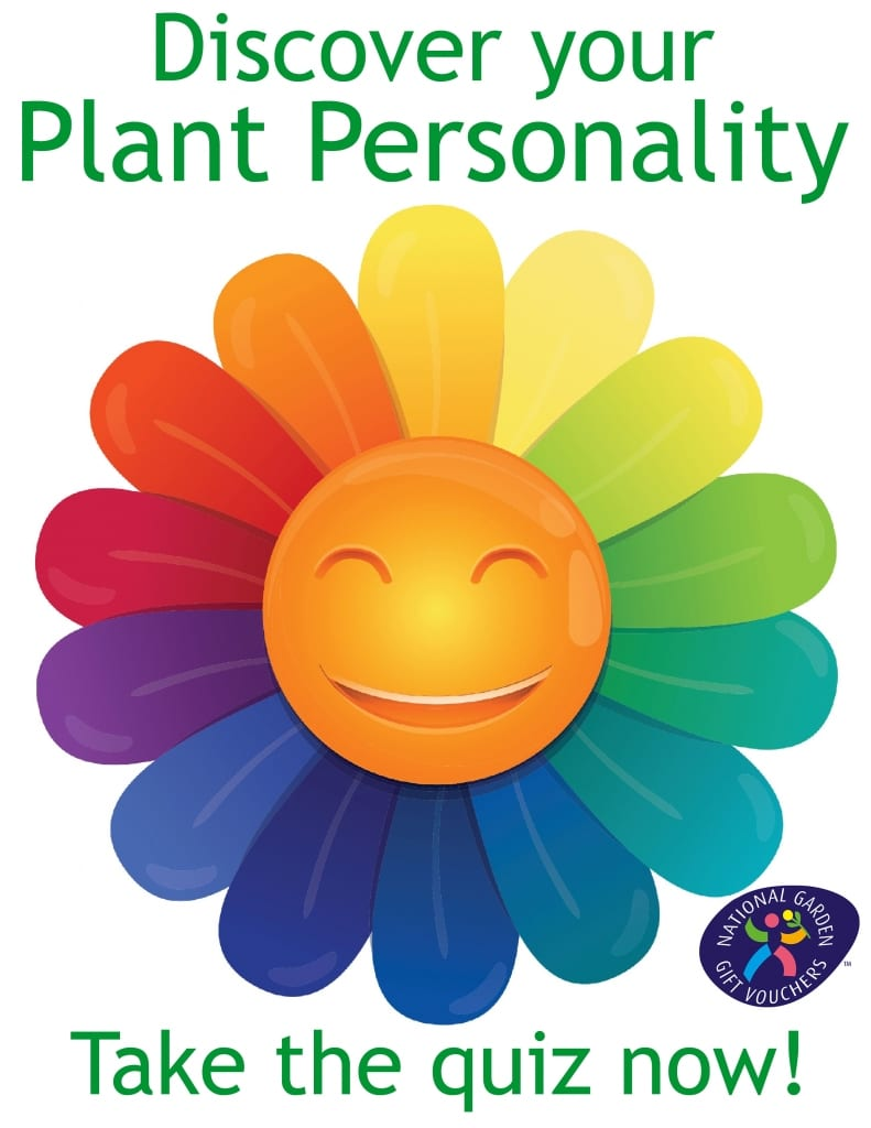 Plant-personality-quiz-david-domoney