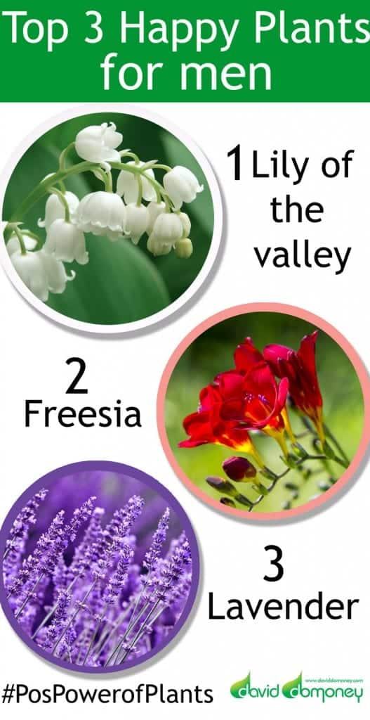 chelsea-plants-top-3-men