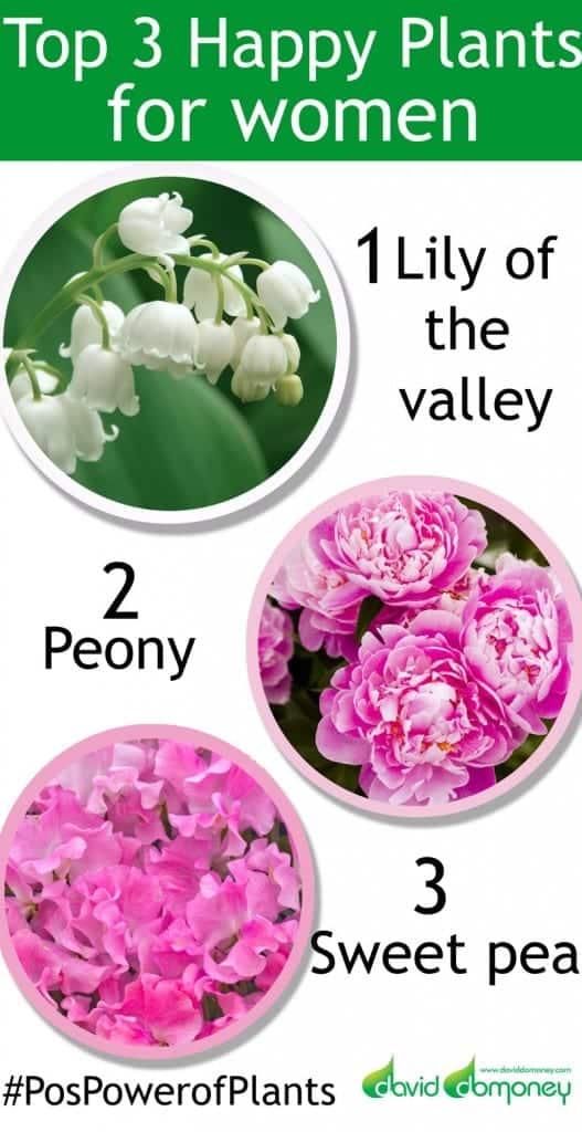 chelsea-plants-top-3-women