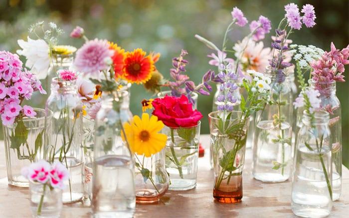 Flower display in vases make cut flowers last