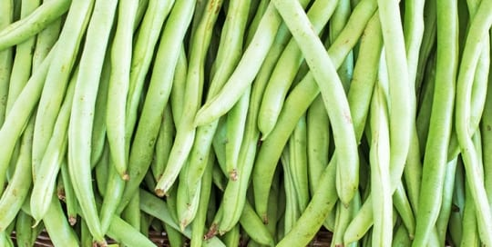 french-bean-harvest-grow-your-own