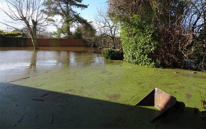 love-your-garden-makeover-somerset-floods